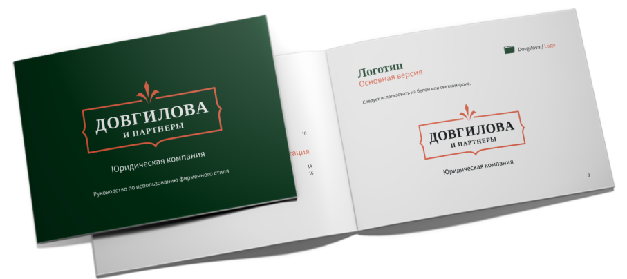 case_dovgilova_guideline