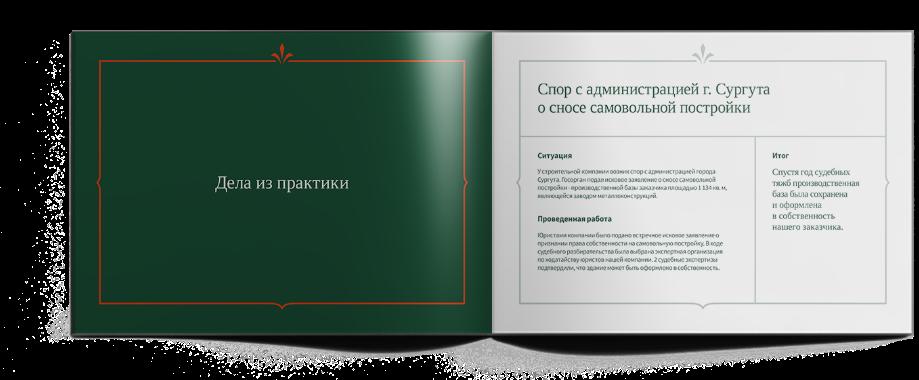 case_dovgilova_pres_3
